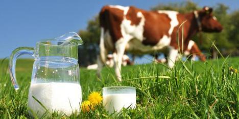 manfaat-susu-bagi-tubuh